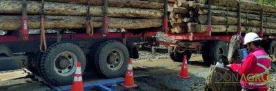Balanza movil para camiones Hook TGE - 30
