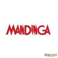 Electrificador Mandinga C600 100Km 220v