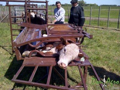 Volteador de Terneros Mecano ganadero